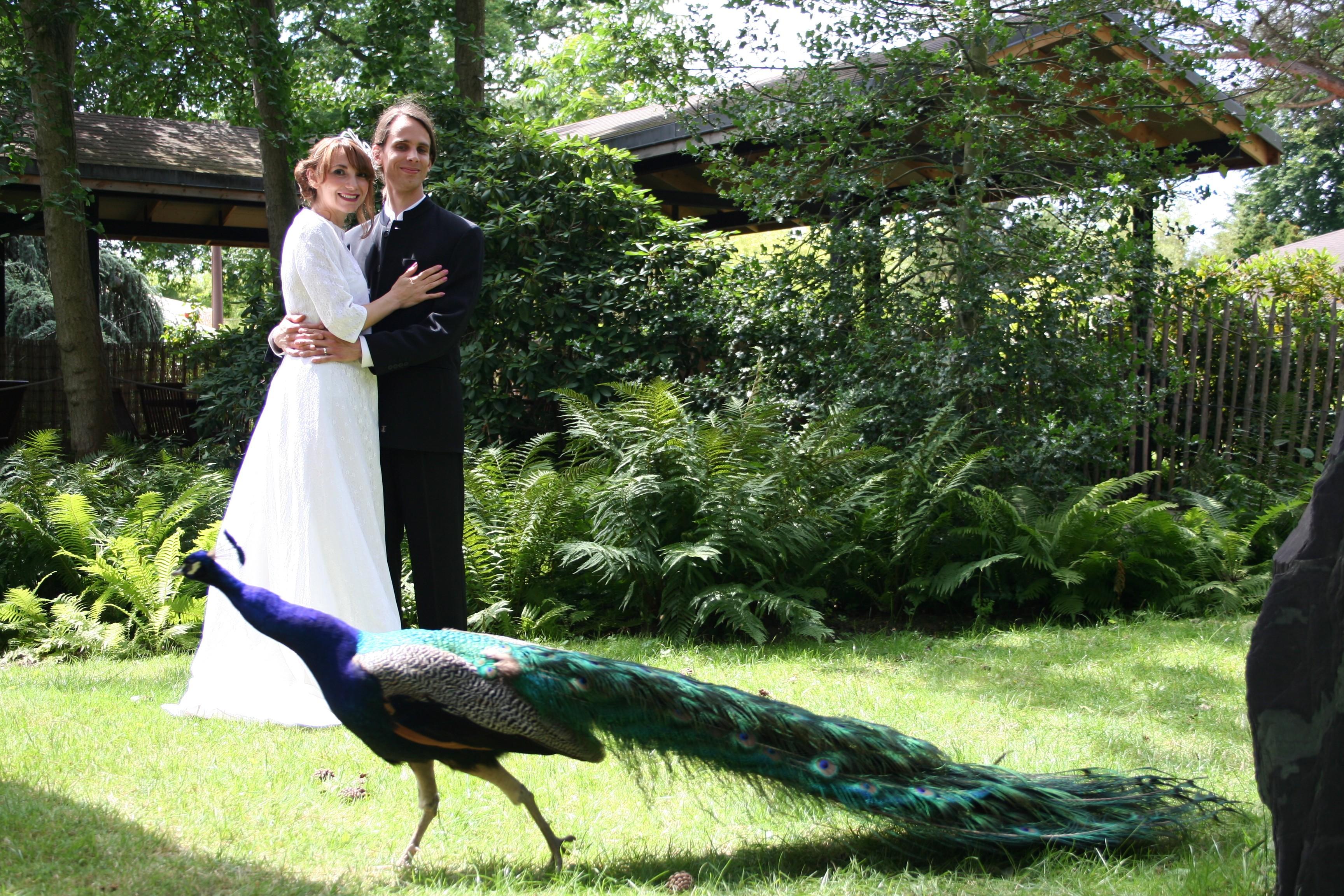Mariage dans un jardin le blog de patrice schmink - Mariage dans un jardin decoration ...
